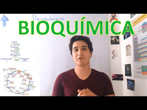 introduction-to-biochemistry.-beginner-level.-in-6-minutes