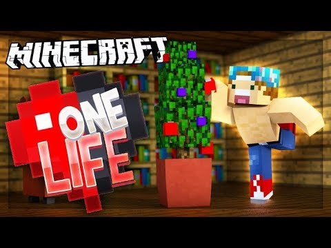 CHRISTMAS DECORATIONS!   One Life SMP #53