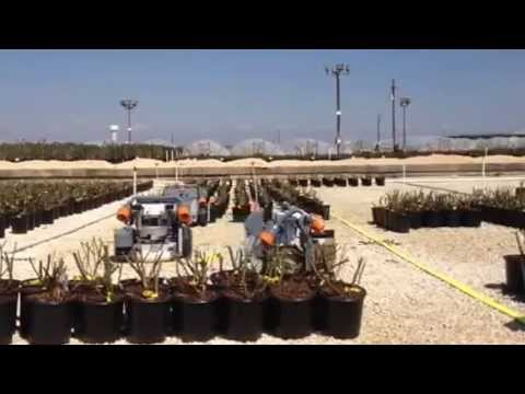 Robots Moving Plants At Color Spot Nursery In San Antonio