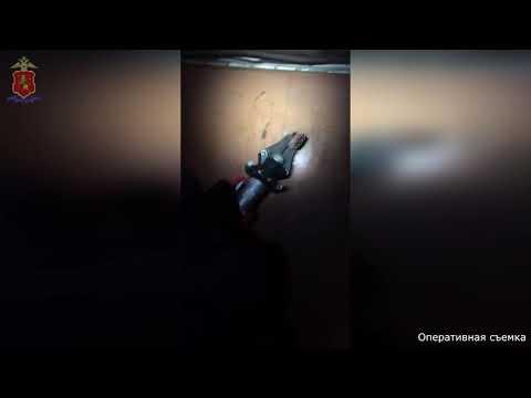 Полицейские обнаружили оружейный арсенал в гаражных боксах в Гусь-Хрустальном
