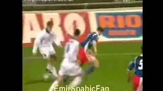 Sergej Barbarez BiH goals