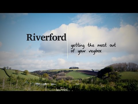 Organic food delivery with the Riverford Veg Box