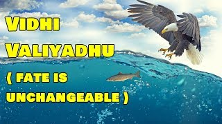 விதி வலியது   Mahabharatham Story in Tamil   Indian Mythology Stories in Tamil
