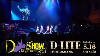 D-LITE (from BIGBANG) - 'D-Day' (DなSHOW Vol.1)