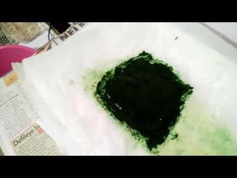 Amatör Spirulina üretim - 5