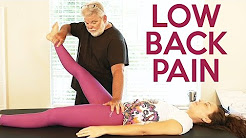 Chiropractic for Low Back Pain, Part 2 | Chiro Adjustment, Applied Kinesiology, Cause of Pain