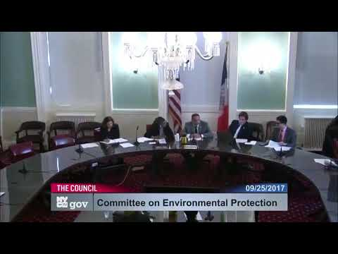 Noise Hearing by NYC Council Environmental Protection Committee