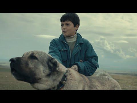 映画『シーヴァス 王子さまになりたかった少年と負け犬だった闘犬の物語』予告編