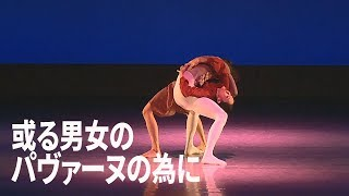【Contemporary Dance】『或る男女のパヴァーヌのために』(振付:篠原未起子/出演:太陽とヒゲ)