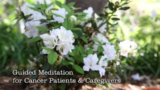 Guided Meditation for Cancer Patients and Caregivers HD