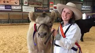 Murray Grey breeder claims Heifer Expo crown