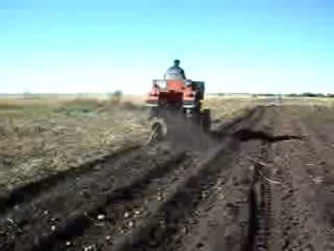 Продать или купить картофелекопалка в беларуси. Продам польскую копалку, полностья в рабочем состоянии, ролики новые, транспортёр.
