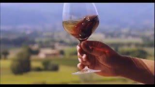 Дегустация вина. Гастрономический тур - Сиена, Тоскана, Италия.(, 2016-05-14T06:34:55.000Z)