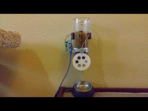 DIY Automated cat feeder