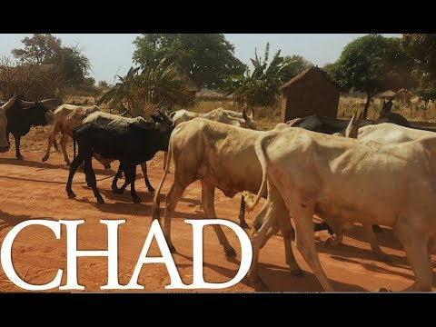 Bennies Travel Blog | Chad trip
