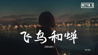 任然 -飞鸟和蝉 (Hot Music Remix) 「你骄傲的飞远,我栖息的夏天」【動態歌詞/pīn yīn gē cí】