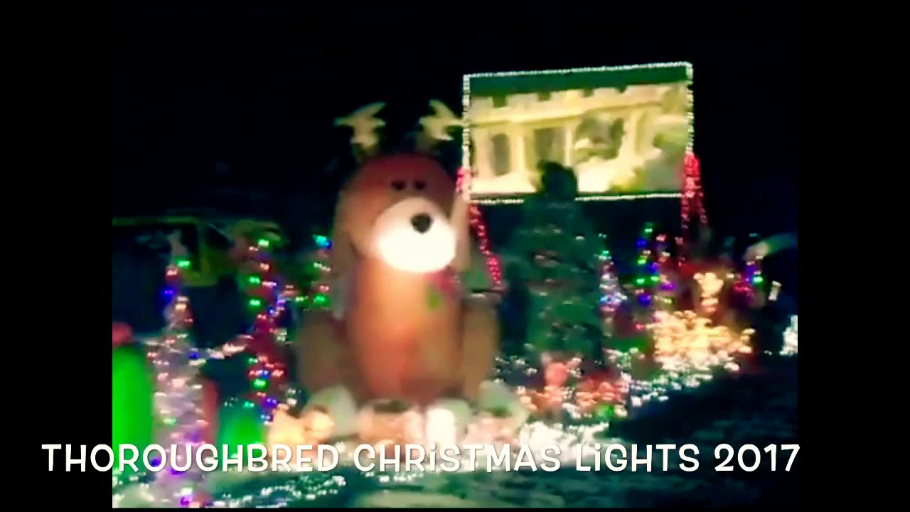 thoroughbred christmas lights 2017 youtube - Thoroughbred Christmas Lights