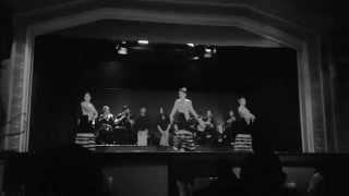 танец Фламенко Испания / Flamenco Spain(Испания / Барселона Flamenco черно-белое видео танец