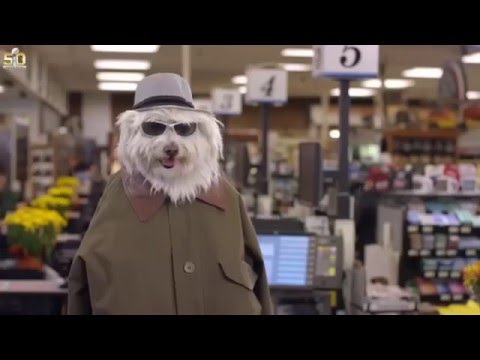 doritos dog commercial 2016