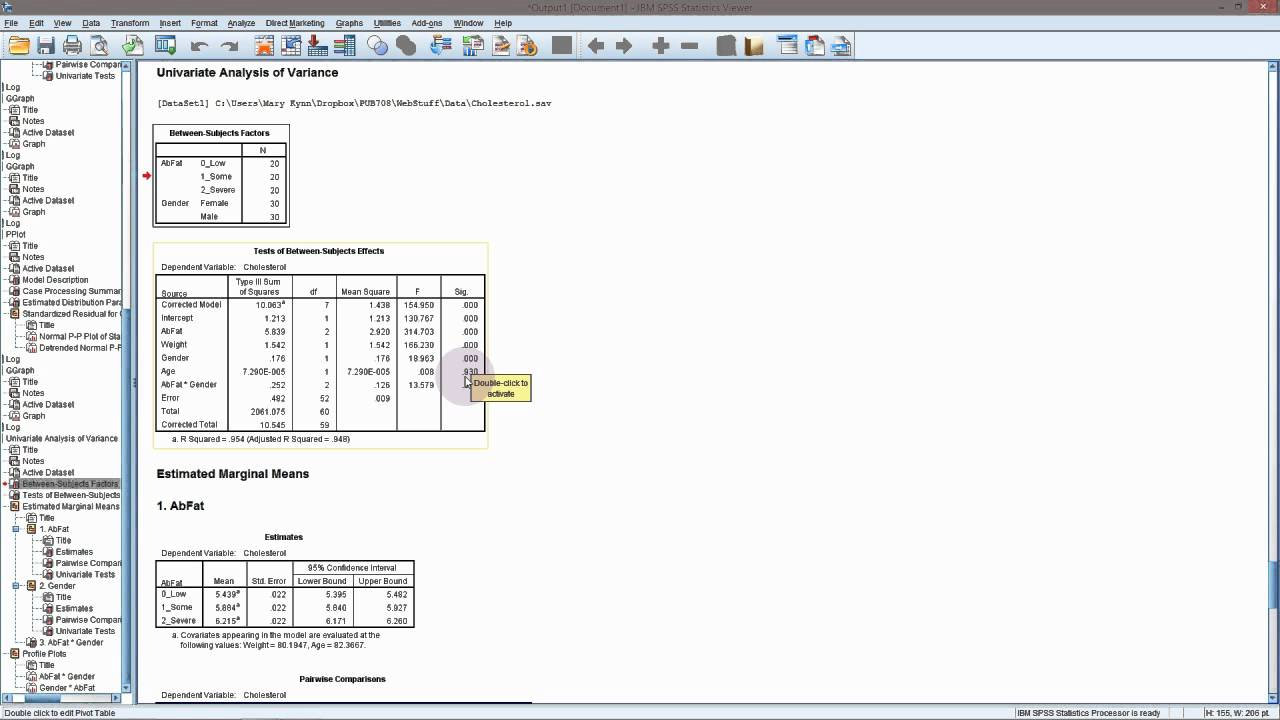 SPSS - General Linear Model (with interaction)