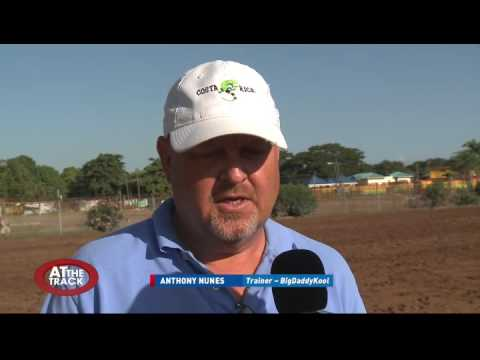 Jamaica St Leger review & More! | At the Track | July 21, 2016