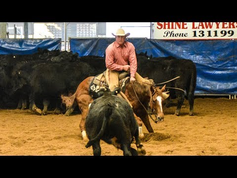 Darling Downs Futurity Show Non Pro Classic Challenge Final   Steve Smith riding Asa Cat