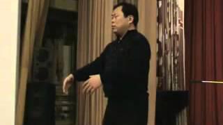 Чжун Юань цигун   Большое дерево