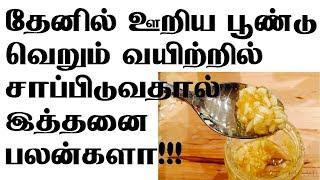 தேனில் ஊறிய பூண்டு வெறும் வயிற்றில் சாப்பிடுவதால் இத்தனை பலன்களா!!! Garlic and Honey Benefits