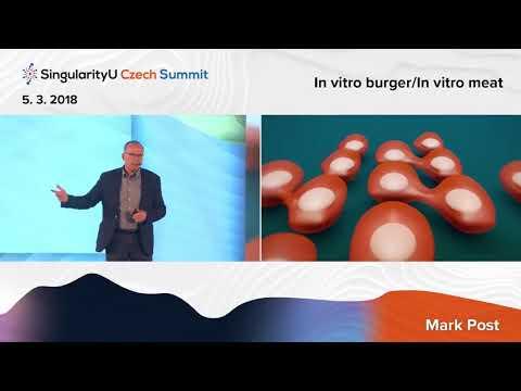 Future of Energy I Mark Post I Digitizing Food: In Vitro Burgers I SingularityU Czech Summit 2018