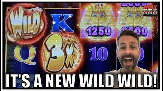 😍 It's a Brand New WILD WILD SLOT 😍 and OF COURSE I won big!