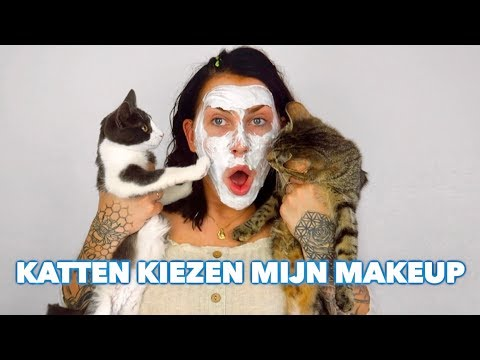 MY CATS PICK MY MAKEUP! | JessieMaya