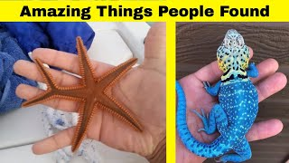 Amazing Things People Have Found