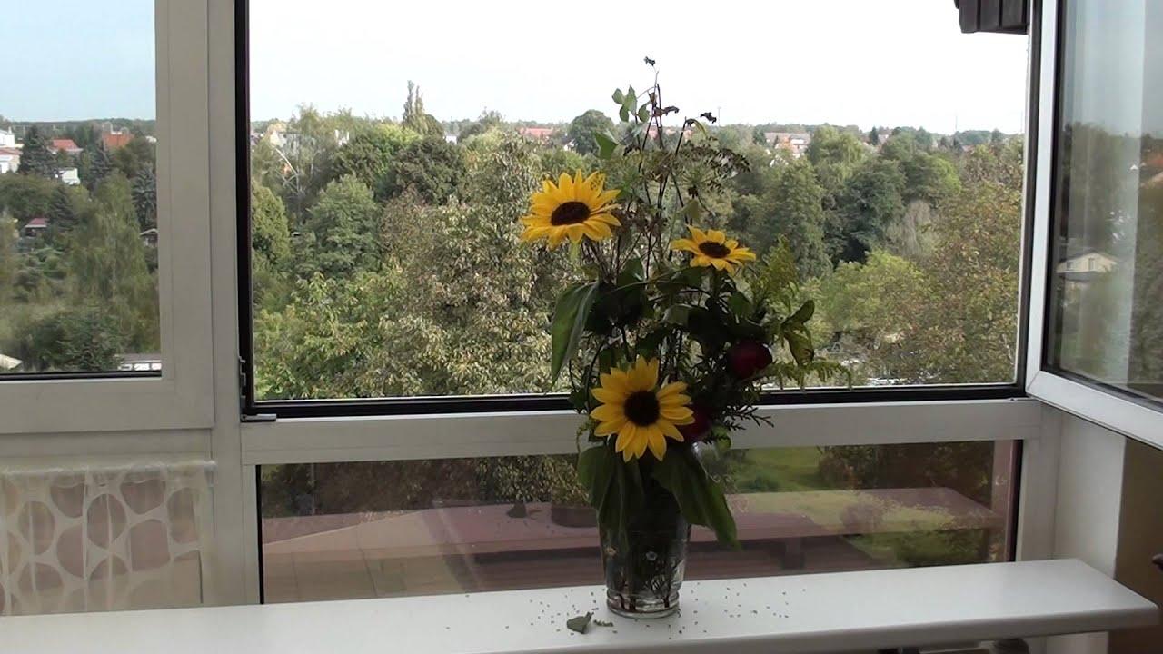 Herbst deko ideen floristik floral design sonnenblumen Äpfel   youtube