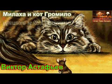 Милаха и кот громило мультфильм
