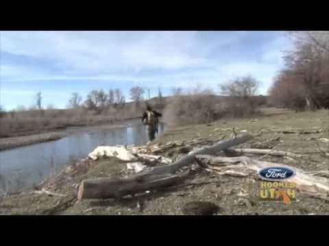 Evanston Bear River Fly Fishing