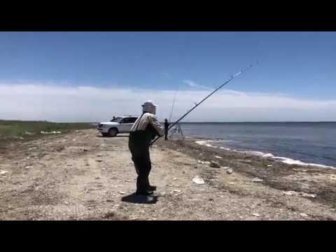 Рыбачим на Каспий