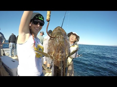 Lingcod Special On The Aloha Spirit - Channel Islands Sportfishing