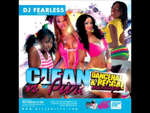 DJ FearLess - Clean & Pure DanceHall Mixtape - March 2013