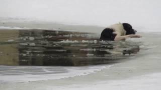 روسيا .. أنقذ كلبا من الغرق بطريقة جنونية وسط المدينة !