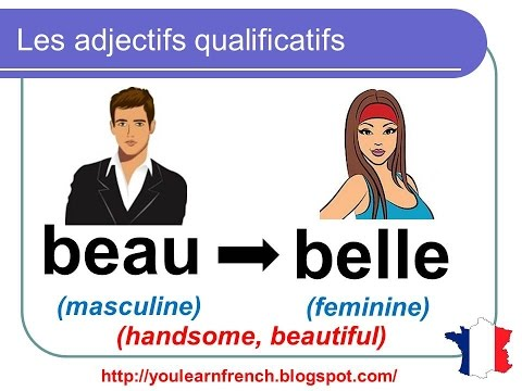 French Lesson 95 - MUST KNOW Common Most used Adjectives - Adjectifs qualificatifs communs