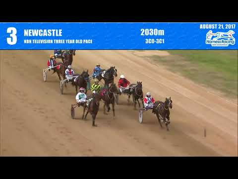 NEWCASTLE - 21/08/2017 - Race 3 - NBN TELEVISION THREE YEAR OLD PACE