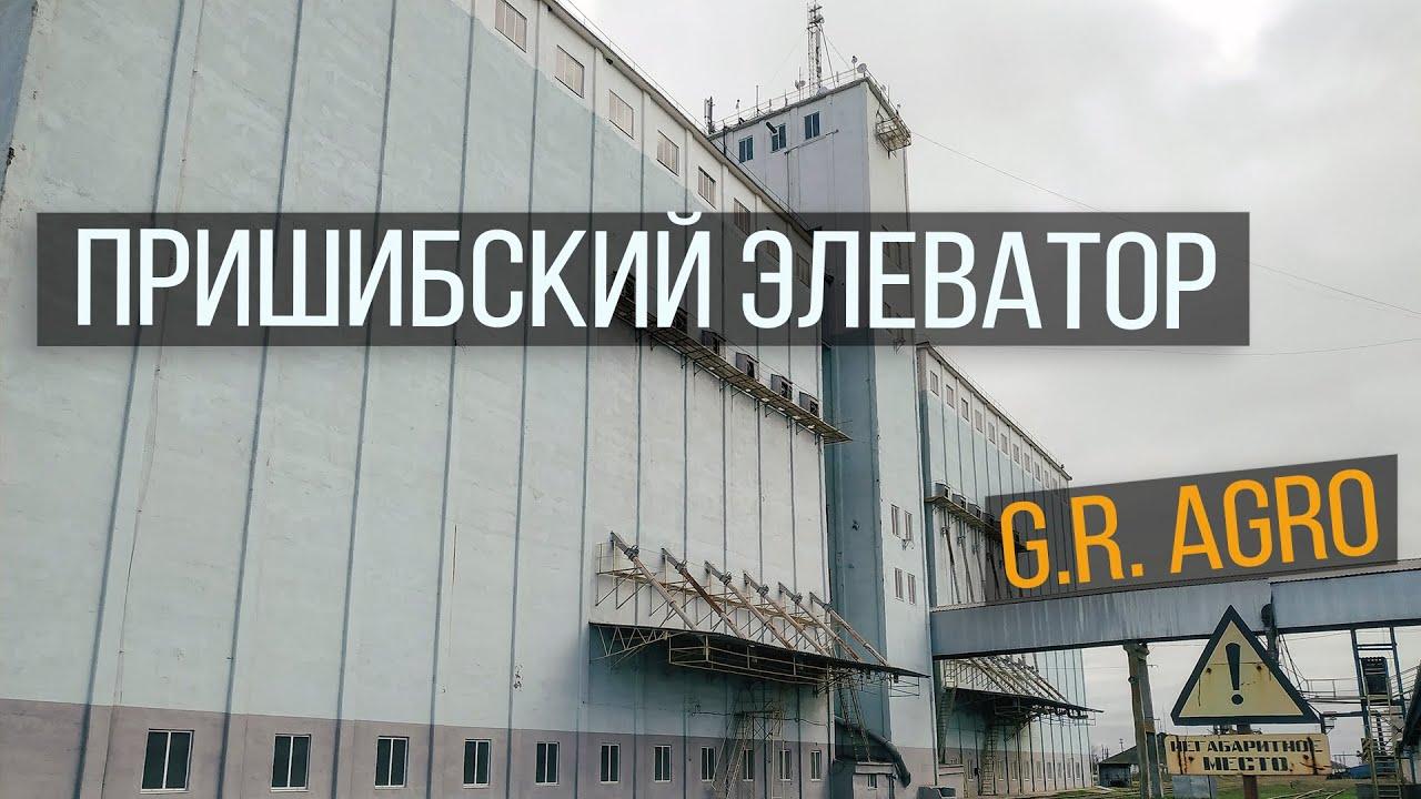 Элеватор студия цепной навозный транспортер