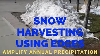 Snow Harvesting Using Edges: Use permaculture design to amplify annual precipitation