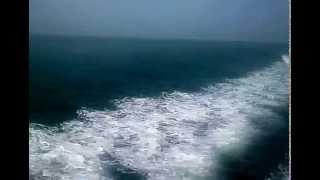 My Trip My Adventure ( Batam - Tanjung Pinang )