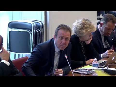 Olivier Gaillard Monnaies virtuelles et refonte de la fiscalité locale (21 mars 2018)