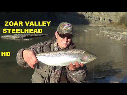 ZOAR VALLEY STEELHEAD FISHING - Cattaraugus Creek