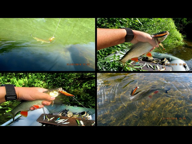 Ловля головля и щуки воблерами с Aliexpress на малой реке
