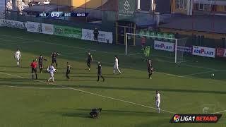 FC Hermannstadt - FC Botoșani 1-1 (etapa 15, Liga 1 Betano)