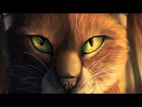 Warrior cats the last hope pdf writer