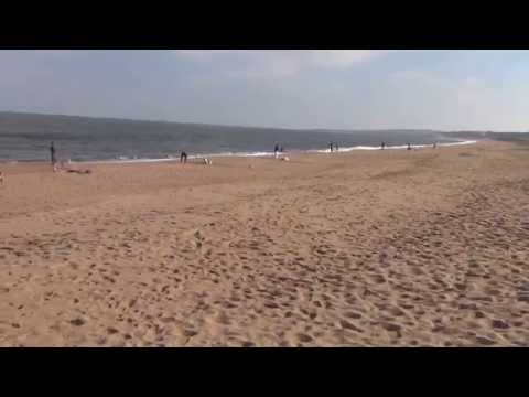 Playas el chileno, Pinares y Delicias de Punta del Este